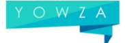 yowza consulting